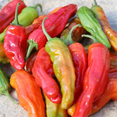 Shishito Pepper Vegetable Seeds AS2498