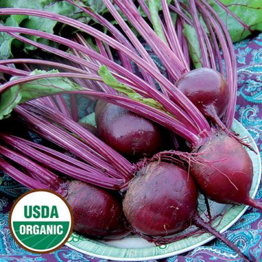 Detroit Dark Red Beet Vegetable Seeds AS2038